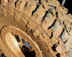 maxxis-treapador-radial-tire-mudorig
